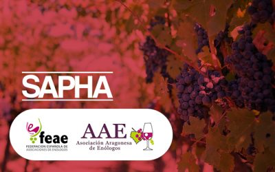 Los enólogos aragoneses, presentes en #SAPHA2019.