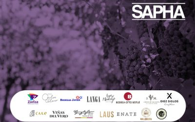 El mundo del vino en #SAPHA2019